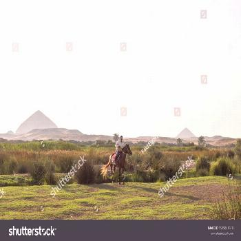 Giza, Egypt - June �8, �017, A man riding a horse and wandering in one of the vill