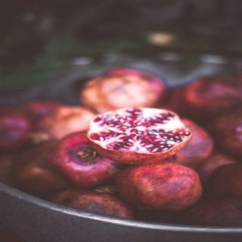 Blog |  Pomegranates always make me think of royalty. They are so beautiful with their texture and