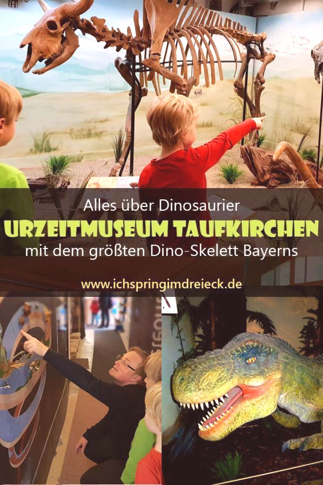All about dinosaurs the Urzeitmuseum Taufkirchen with the largest dinosaur skeleton in Bavaria -