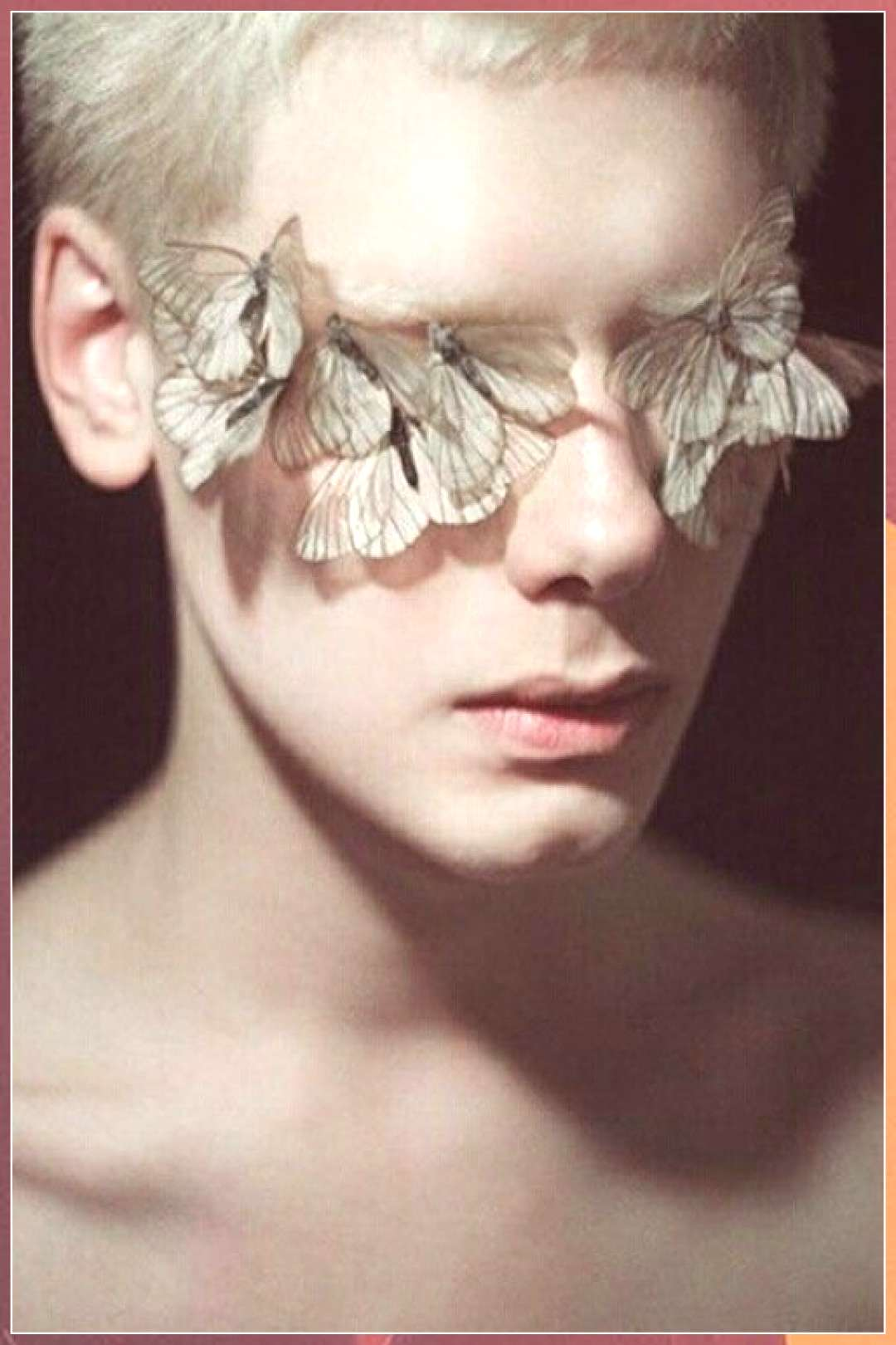 butterflies, high end beauty, editorial - christmas dekoration photography photography definition p