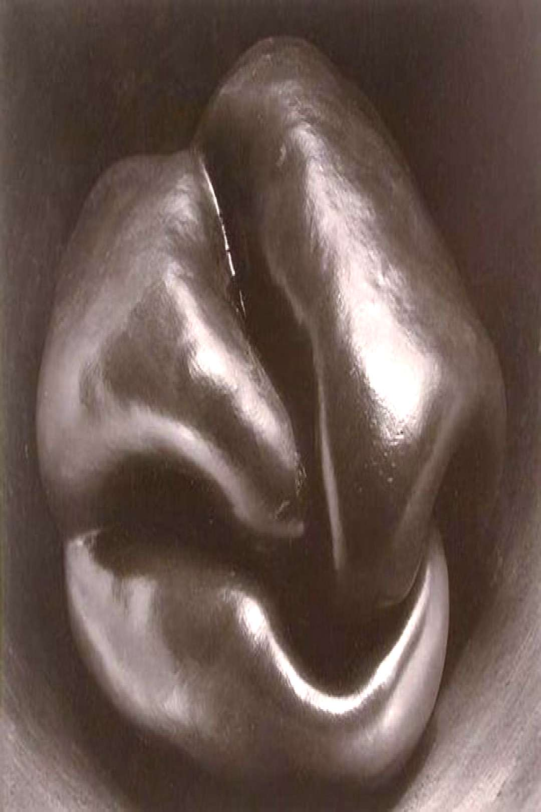 edward weston pepper Abstract Photography