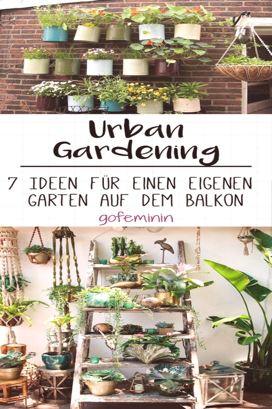 Urban gardening 7 ideas for your own vegetable garden on the balcony - Urban gardening 7 ideas f